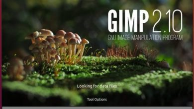 Photo of GIMP 2.10.6 Introduces Vertical Text, New Filters, and GIMP Extension Public Repo