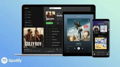 Photo of Spotify Launched in India Despite Trouble With WMG