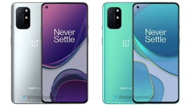 Photo of Leak Reveals New Colour For the OnePlus 8T: Lunar Silver Would feature a Matte Finish