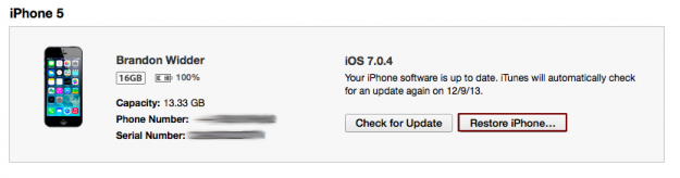 restore ipad-iphone