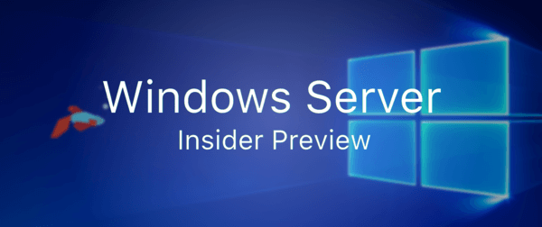 Photo of Microsoft Launches Windows Server 2019 Insider Preview Build 17650