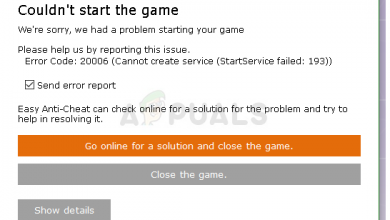 Fortnite Error Code 20006