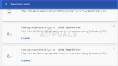Download Failed: Network Error