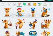 WhatsApp Sticker Feature