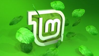 Photo of Linux Mint Releases LMDE 3 'Cindy' Cinnamon with Security and Bug Fixes
