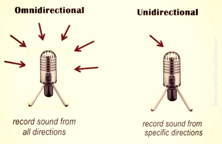 Unidirektional gegen omnidirektional