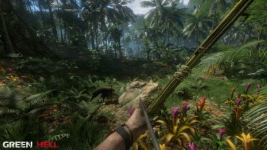 Photo of Amazon Forest Survival Game Green Hell Enters Early Access