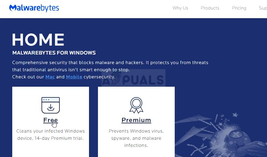Downloading the free trial of Malwarebytes