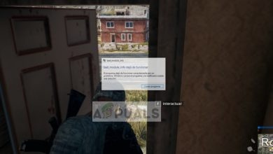 bad_module_info has stopped working in PUBG
