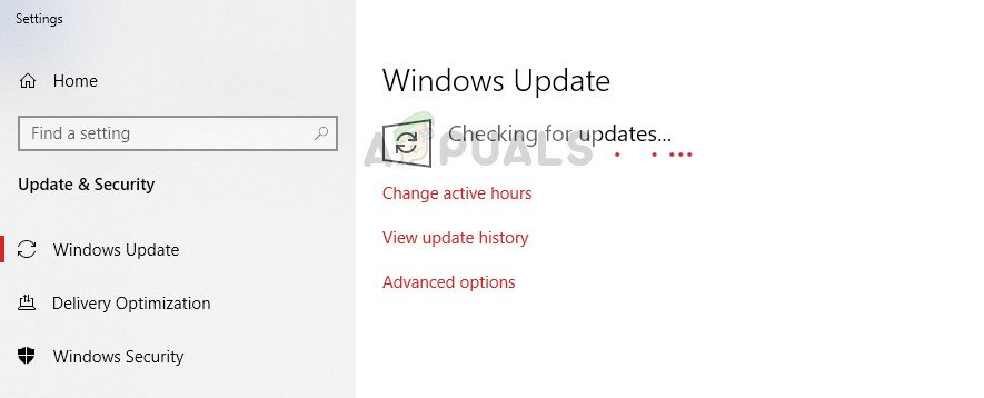 Updating Windows and Microsoft Office