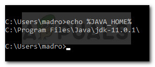 Verifying if the Java environment variable was set correctly