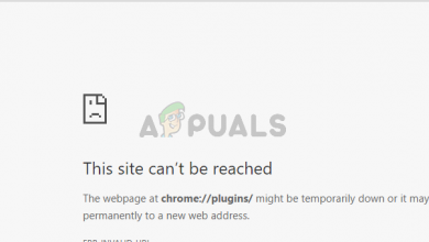 Can't access chrome plugins
