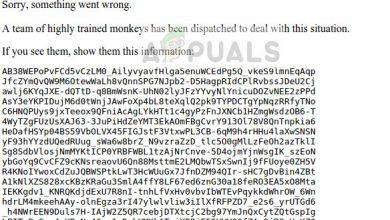 500 Internal Server Error - YouTube