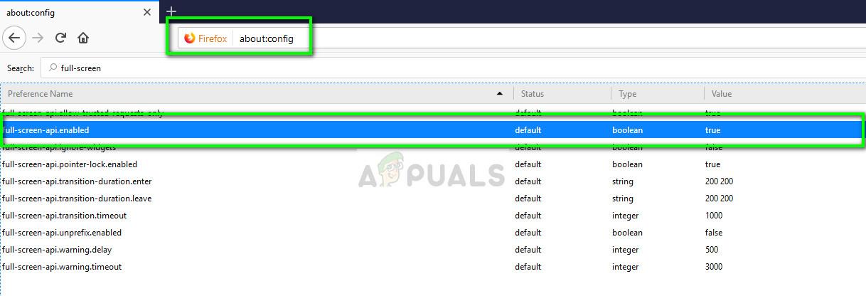full-screen-api.enabled