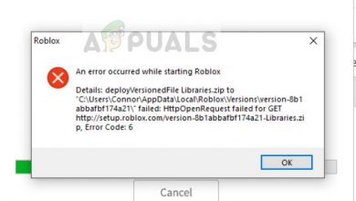 An error encountered starting Roblox