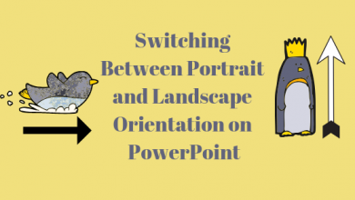 Photo of How to Change the Orientation to Portrait on Microsoft PowerPoint?