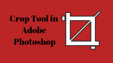 Photo of How to Use the Crop Tool in Adobe Photoshop