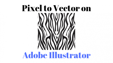 Photo of How to Transform a Picture into a Vector Image on Adobe Illustrator