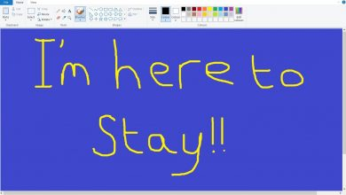 Photo of Microsoft Reverts Decision: Paint Lives On Till Another Day