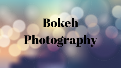 Photo of What is the Bokeh Effect and How to Capture it Right