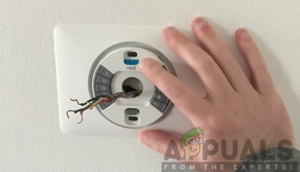 Positioning the Nest Thermostat