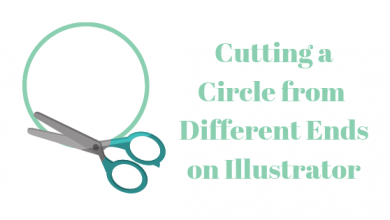 Photo of How to Cut a Circle in Different Paths on Illustrator