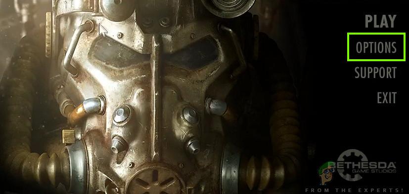 Options - Fallout 4