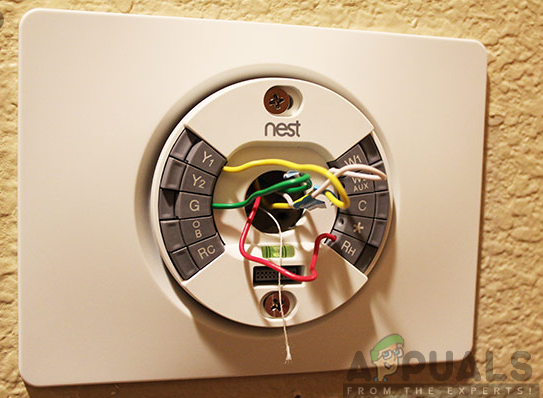 Installation of Nest Learning