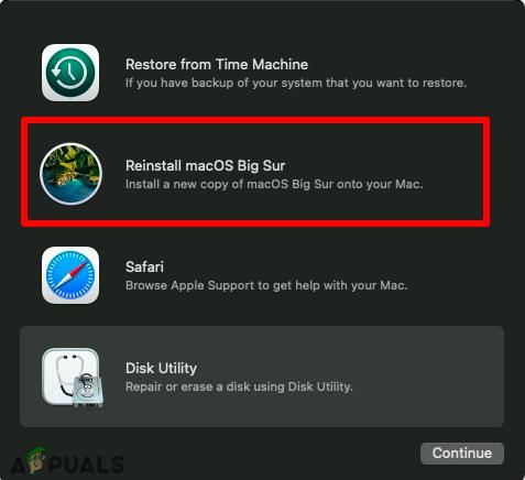Click on Reinstall macOS Big Sur
