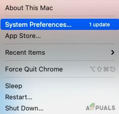 Click on System Preferences