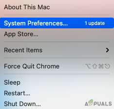 select System Preferences