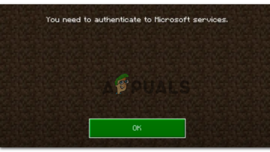 Minecraft Authentication Error