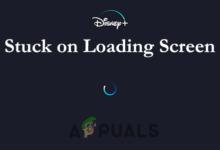 fix Disney Plus stuck on loading screen